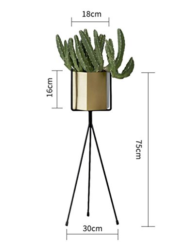 ZCJB Etagères de plantes Europe Du Nord Fer Art Fleur Stand D'intérieur Fleur Stand Balcon Salon Floorstanding Fleur Pot Rack Coin Étagère De Fer (taille : Lage)