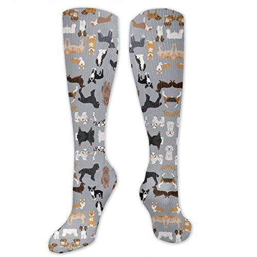 CVDGSAD Dogs Grey Cute Dog Compression Socken for Women & Men - Compression Stockings for Travel, Running, Pregnancy, Nurse