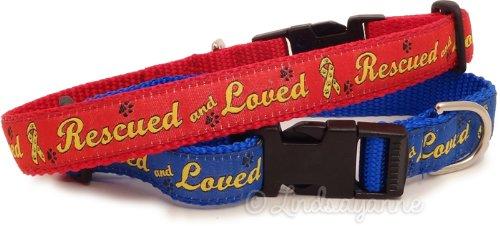Dog Ink Gerettet und Geliebt-Rescue Hund Halsband und Leine Set, Large, Blau -