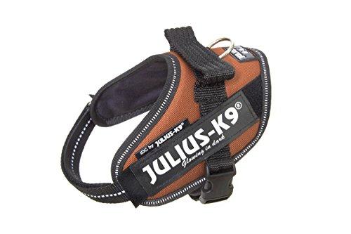 Julius-K9, 16IDC-KOR-MM, IDC-Powergeschirr, Hundegeschirr, Größe: Mini-Mini, Kupferorange