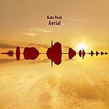 Aerial (2018 Remaster) [VINYL]