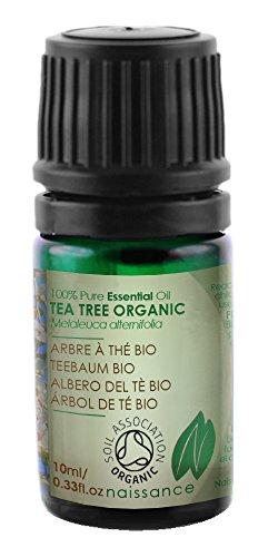 Naissance Teebaumöl 10ml BIO zertifiziert 100% naturreines ätherisches Öl