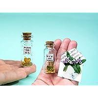 '' Tú y yo, para siempre'' '' me gusta todo de ti''-Mensaje en una botella. Miniaturas. Regalo personalizado. Divertida postal de amor.