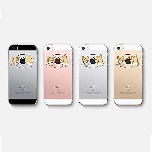 iphone 5 hülle häschen