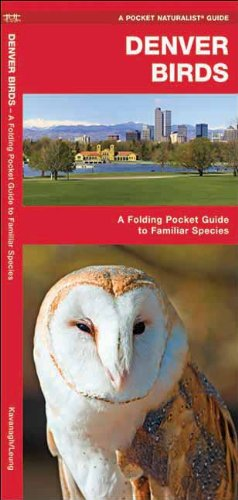 Denver Birds: A Folding Pocket Guide to Familiar Species (Pocket Naturalist Guide Series) (Colorado Bird State)