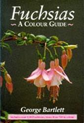 Fuchsias: A Colour Guide