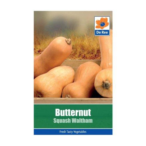 Butternut Squash Waltham Seeds