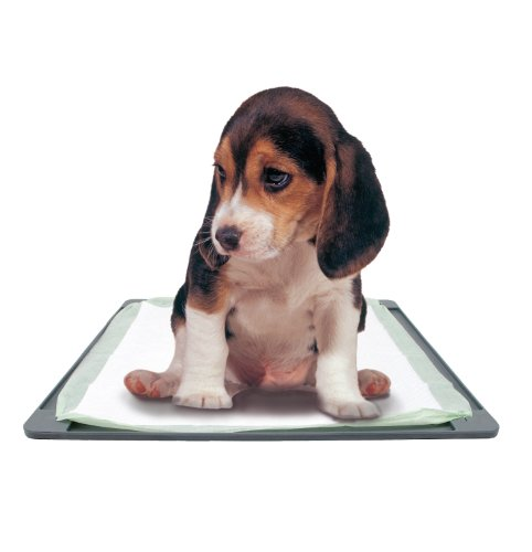 Dogit-antiscivoloresistenteEasy-to-clean-training-Pad-Mat-584-x-584-cm