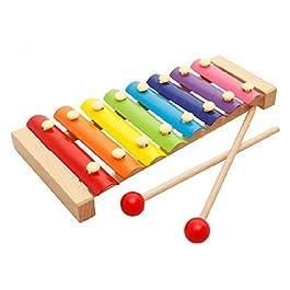 Binnan Giochi Musicali per Bambino delle Ragazze dei Ragazzi Giocattoli Musicali per Bambini,8 Note Glockenspiel…