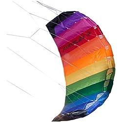 Wolkenstürmer Paraflex Basic 1.2 Rainbow - Aile de traction, arc-en-ciel - Prêt a voler cerf-volant 2 lignes pour débutants- voile de traction - aile de kitesurf