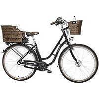 FISCHER E-Bike RETRO ER 1704, Vorderradmotor 36 V/317 Wh und LED-Display, Rücktrittbremse