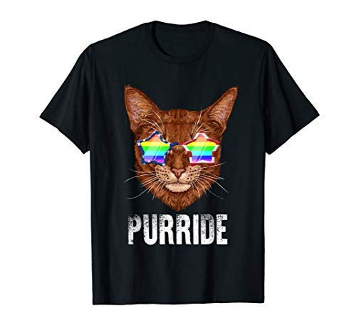 Kostüm-T-Shirts Homosexuell Pride Lesben T-Shirt ()