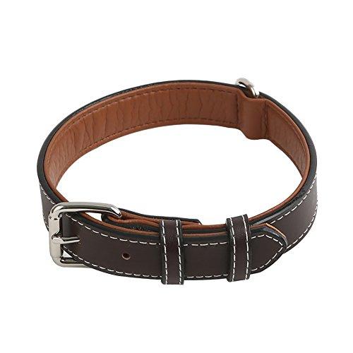 Vivifying Collar de piel auténtica para perro, duradero y cómodo, ajustable entre 36,3 y 46,7 cm,...
