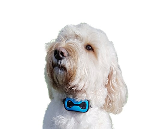 Lunalou Sound & Vibration No Bark Collar, NO SHOCK,Anti Barking Device, Harmless & Humane and so easy to use. With… 1