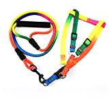dfyjrikjso Bunte runde Seil Haustier brustgurt hundeleine Nylon Leine hundekette Seil Bunte 12mm * 120 cm + 2,5 cm * 50-70 cm