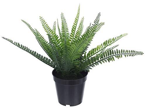 Dekoleidenschaft Deko Farn im Topf, Topfpflanze, Kunstpflanze