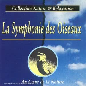 La Symphonie Des Oiseaux - Au Coeur De La Nature
