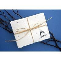 Cast Paper Art Note Cards-Bluebird 1 Pk-10 Cards Eco-Conscious Eco-Conscious Product Line