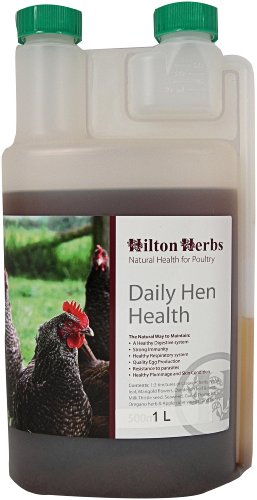 hilton-hierbas-diario-gallina-salud