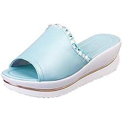 Sommer Sandalen Hausschuhe Xinan Frauen Platform Wedges Schuhe (40, Hellblau)