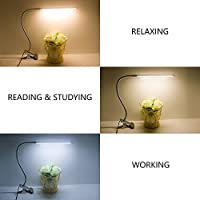 Clip On Light LED Clamp Desk Lamp Dimmable(Eye Care,Flexible Gooseneck,8W,USB Powered,3 Lighting Modes,10 Brightness,Memory Function) Clip On Reading Light for Books(Silver) by VSLIFE