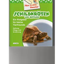 Mein erstes Haustier-Schildkröten und Reptilien