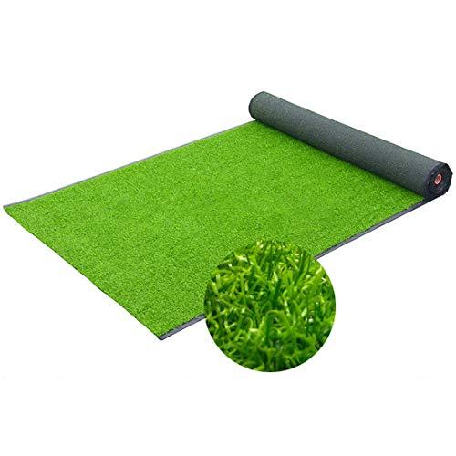 Kunstrasen Balkon/Terrasse/Garten/Hund Haustier Matte/Fußmatte, natürliche realistische 20 mm hohe Dichte simulierten Rasen, Multi-Size-Kunstrasen (Size : 1 * 3m) -