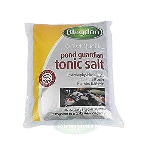 Blagdon Small Guardian Pond Salt