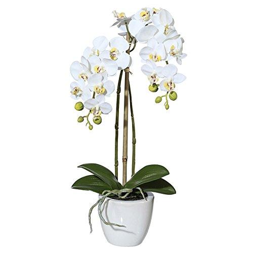 Pflanzen-Kölle Kunstblume Mini-Orchidee Phalaenopsis weiß, im Keramiktopf, ca. 43 cm