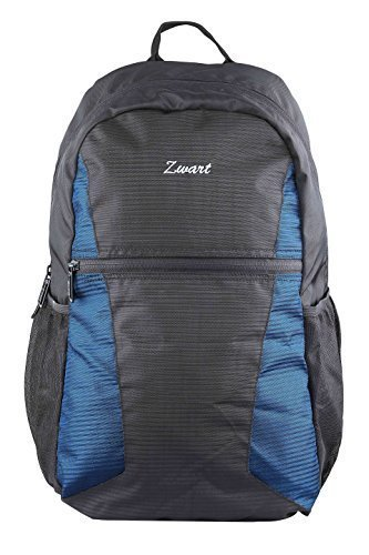 Zwart 15 Ltrs Black And Blue Laptop Backpack