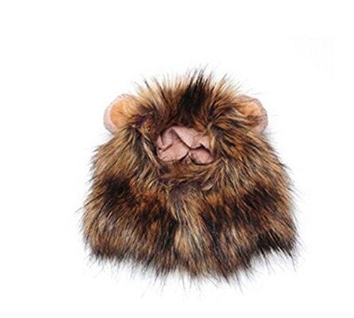 scrox Frisur Abschlussballkleid, für Haustiere, süßer, Tiger, Kopf, Modell, Katzen und Katzen, Halloween, Geschenke-Noel (Katze Halloween Frisuren)