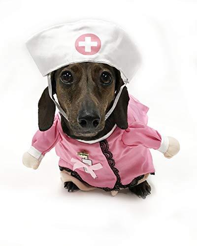 Kostüm Schuss Arzt - Midlee Hundekostüm für Krankenschwester, Größe S