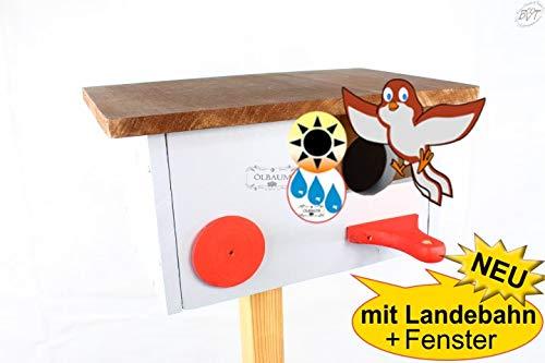 Nistkasten + Überwinterungsplatz Vogelhaus xxl, Haus GRAU MIT LANDEBAHN + Fixierleisten + Holzdach zum Öffnen in dunkelbraun, ca. 35 x 23 x 20 cm, Einflug ca. 32 mm (30-33 mm) für größe