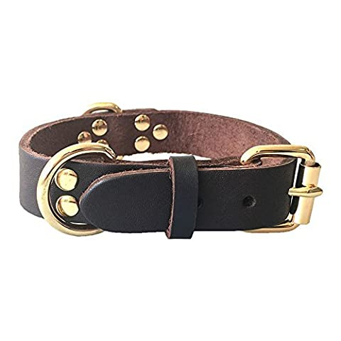 Fairwin Leather Dog Collar - Best Dog Leather Leashes Collar