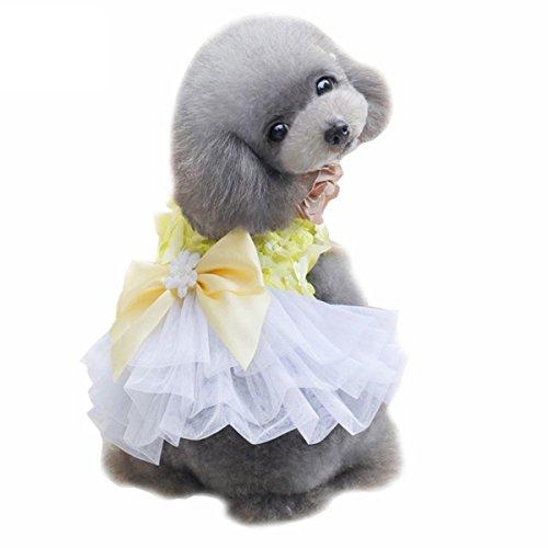 g Hunde-Rock Teddy Pudel Schmetterlingsfliegenrock Frühling und Sommer Prinzessin Puff Rock Hochzeitskleid, yellow, XL (Pudel Für Pudel Rock)