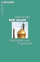 Der Islam: Geschichte und Gegenwart (Beck'sche Reihe)
