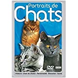 portraits de chats