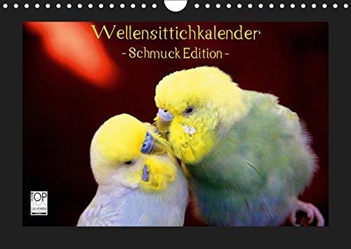Wellensittichkalender - Schmuck Edition (Wandkalender 2019 DIN A4 quer): Mit dem brandneuen Wellensittichkalender des Naturfotografen Björn Bergmann ... (Monatskalender, 14 Seiten ) (CALVENDO Tiere)