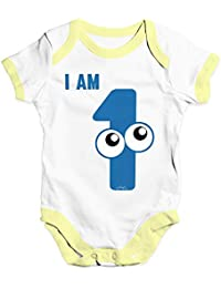 Personalised Dinosaur 1st Birthday Baby Unisex Funny Baby Grow Bodysuit