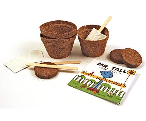 sig., kit per coltivare girasoli
