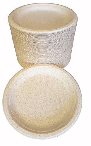100% kompostierbar und biologisch abbaubar, 22,9cm Einweg-Teller-(125Zählen), aus Bambus & Zuckerrohr, eine hervorragende Festigkeit