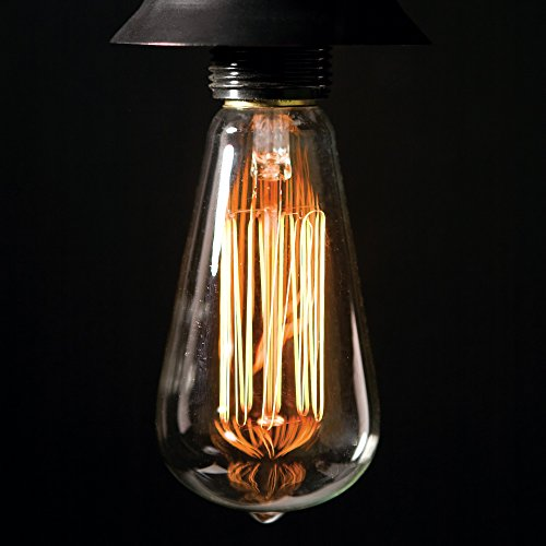 Marical ST64 Edison Filament Bulb Squirrel Cage