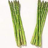 good01 20 Pz Semi Di Verdure, Semi Di Asparagi Bonsai In Vaso Per Piantare In Giardino Fattoria Deliziosa Piante Bonsai Di Verdure A Casa Semi Di Asparagi
