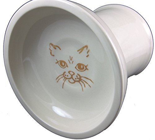 poterie-polonaise-relief-plat-bol-en-grs-croquettes-pour-chat-cat3gingembre-chat-face-orange-sur-crm