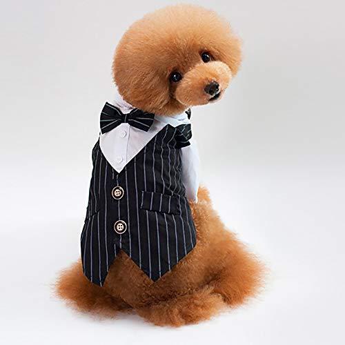 Einen Einfach Kostüm Hunde Für - JFS Hunde Hochzeit Anzug Kleidung, Hund Smoking Kostüme Formal Party Outfits Einfach Und Stilvoll/Zwei Farben Zur Auswahl Passen Alle Hunde,B,M