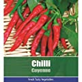 De Ree Chilli Cayenne Pepper Vegetable / Fruit Plant 95 Seeds Hot! : everything five pounds (or less!)