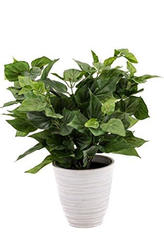 artfleur – künstlicher Philodendron 30cm Blühpflanze Kunstpflanze Topfpflanze