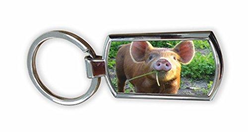 Immagine maiale portachiavi cromato, in confezione regalo, # 8(chewing erba)