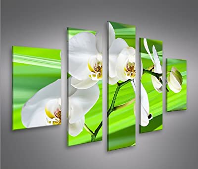 Green Flower MF Giclee Canvas Art Picture Print NEW Modern Wall Art 5 Pieces - inexpensive UK light store.