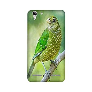 Lenovo K5+ Birds Cases and Covers by Aaranis